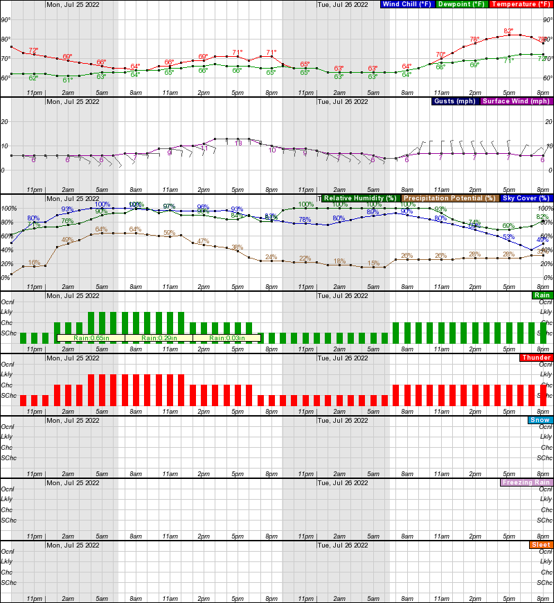 Hasting Hourly Weather Forecast Graph