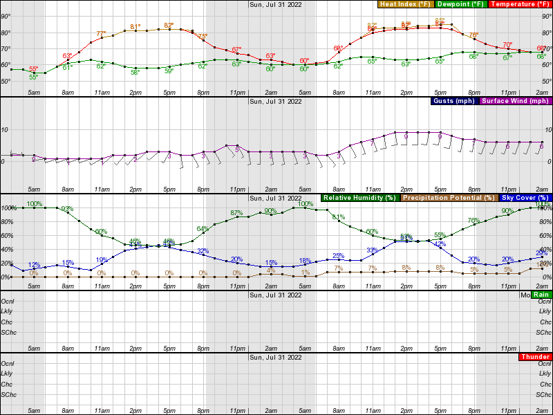 Pontiac Hourly Weather Forecast Graph