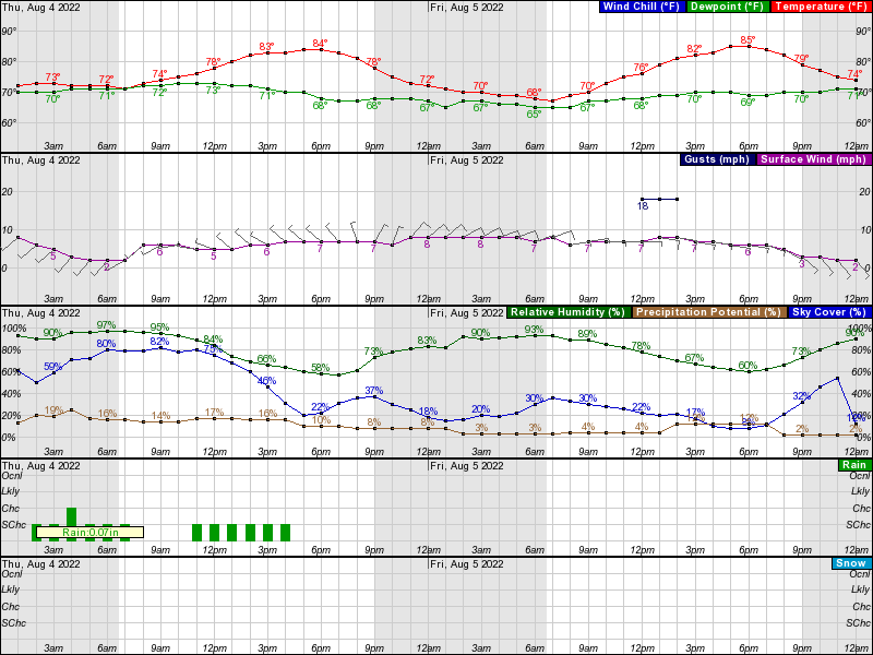 NWS Grand Rapids Hourly Weather Forecast