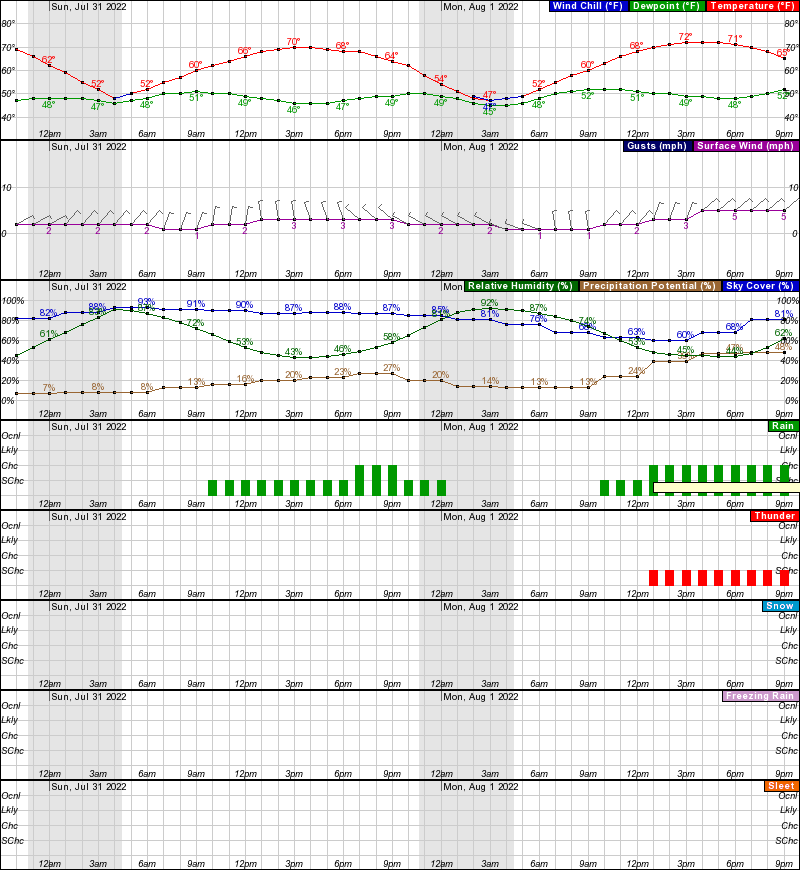 Eagle Hourly Weather Forecast Graph